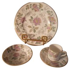 Wedgwood Avon Multi-Color Luncheon Setting - 4 pieces