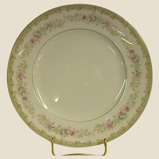 Kenwood Dinner Plates by Meito China