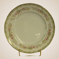 Kenwood Luncheon Plates by Meito China