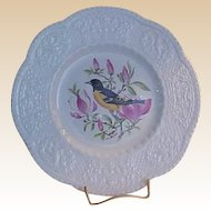 Royal Cauldon Aviary Baltimore Oriole Luncheon Plate