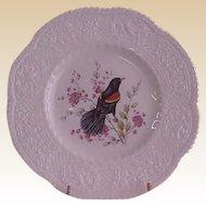 Royal Cauldon Aviary Redwinged Blackbird Luncheon Plates