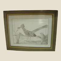 Graphite Drawing of Roadrunner by Noted North Texas Artist Larry Lemons