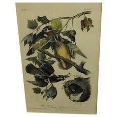1840s Audubon 1st Royal Octavo Edition Hand Colored Wood Duck
