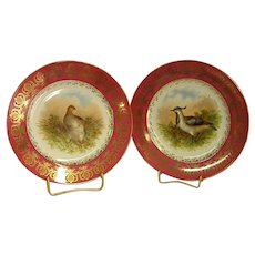 Beautiful Old Pair of Porcelain Plates with Birds