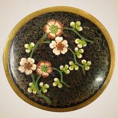 Antique Chinese Cloisonné Prunus Nib or Pin Dish