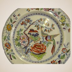 Gorgeous Mason's Ironstone China Plate Circa 1820s