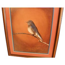 Eastern Bluebird Signed, Double Matted Pastel