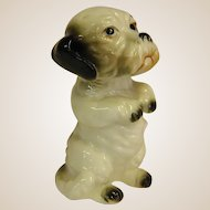 Charming Porcelain Figure Dog Begging