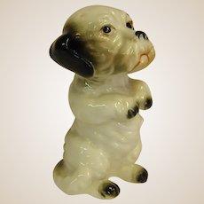 Charming Porcelain Figure Dog Begging