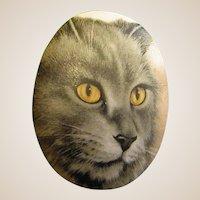 Darling Cat Face Brooch