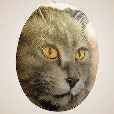 Darling Cat Face Brooch