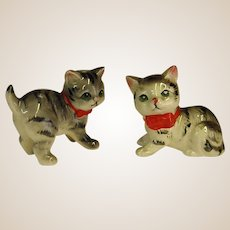 Precious Kitty Cat Salt and Pepper Shakers