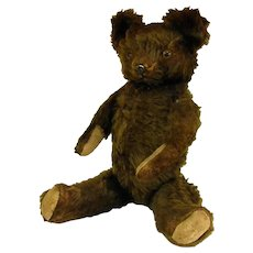 Antique Knickerbocker Bear with Pressed Tin Nose