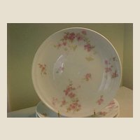 Haviland Salad or Dessert Plates from 1893-1930