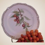 Royal Orchard by Noritake Salad Plates