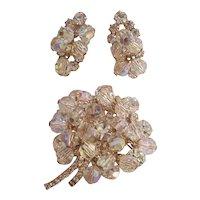 D & E Juliana Crystal Dangle & RS Flower Brooch & Earrings