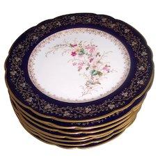 Stunning Set 8 Cobalt Blue & Gilt Floral Plates