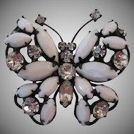 Fantastic Regency Japanned Butterfly Brooch