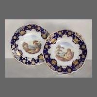 Pair of Mid-19th Century Unmarked Ridgeway Cabinet Plates