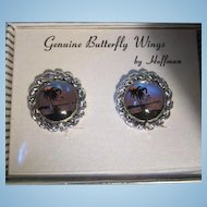 Genuine Butterfly Wings by Hoffman Vintage Clip Earrings in Original Box NOS