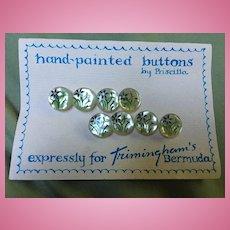 Gorgeous MOP Eight Hand Painted Buttons Priscilla Bermuda Original Card Mint