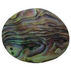 New Zealand Paua Abalone Gorgeous Brooch