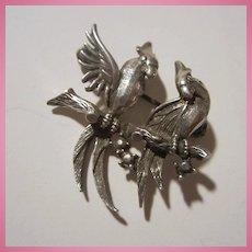 Love Birds on Branch Sterling Silver Petite Brooch