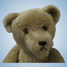 """24"""" Teddy Bear"""