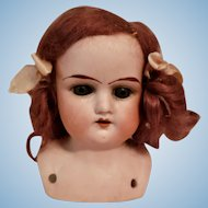 German Bisque Head Shoulder Plate Doll