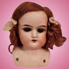German Bisque Head Shoulder Plate Doll
