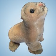 Steiff Robby Seal Plush Toy