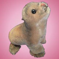 Steiff Robby Seal Plush Toy