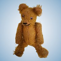 Very Old Mohair Jointed Teddy Bear