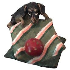 Miniature Vienna Bronze Dachsund Puppy with Ball