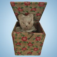 Miniature Cat or Bear Jack in the Box Doll Size