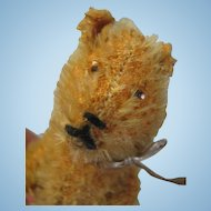 Schuco Miniature Mohair Teddy Bear