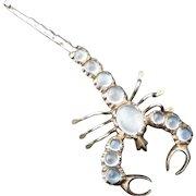 Edwardian sterling silver Ceylon moonstone scorpion brooch