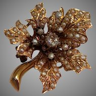Antique 14/15kt Collet Set Diamond and Pearl Brooch