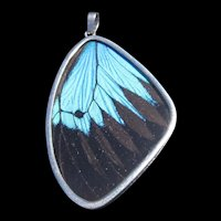Blue Iridescent Butterfly Wing Pendant in Silver Frame