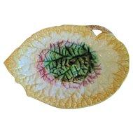 Antique 1880's Majolica Large Begonia Leaf Tray