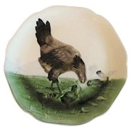 Circa 1900 French Majolica Plate Hen and Chicks