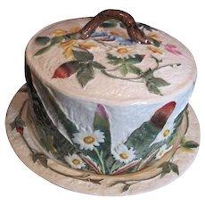 Majolica Cheese Dome