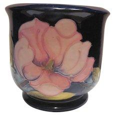 Moorcroft Pottery Jardinere