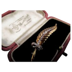 Stunning 18K Gold and Diamond Leaf and Bow Brooch