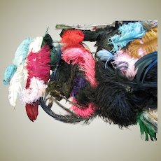 Large Array Of Vintage Feathers