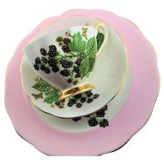 Queen Ann Bone China Three Piece Cup & Saucer