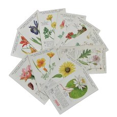 Vintage Coca Cola Flower Advertising Cards