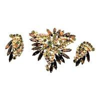 Autumn Colored Juliana Brooch & Earring Set