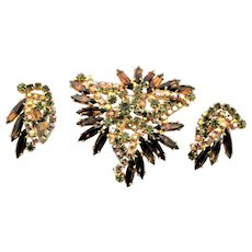 Autumn Colored Juliana Brooch & Earring Set