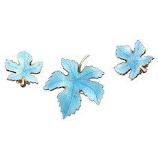 Stunning Aqua Enamel Brooch & Earrings Set